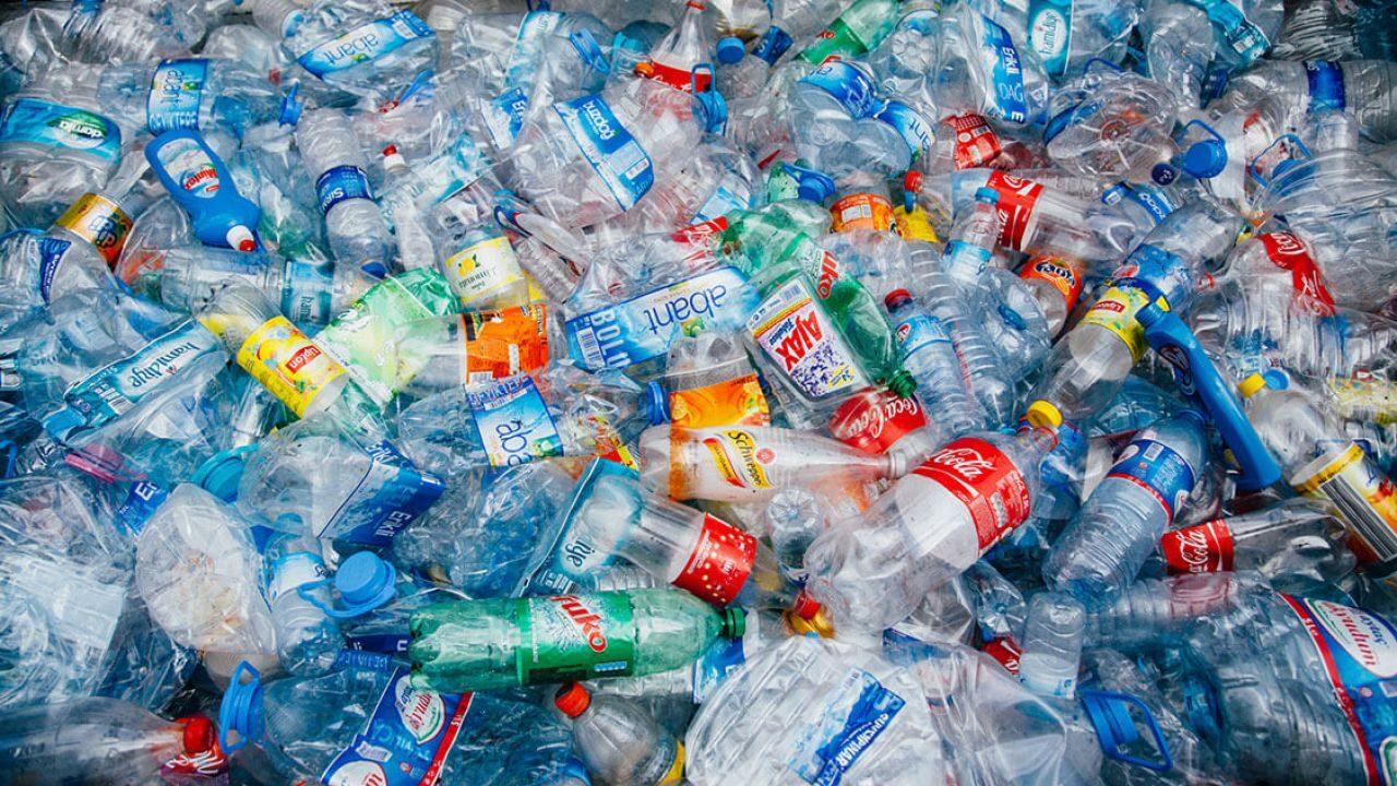 https://silviasardone.it/wp-content/uploads/2021/06/trovato-nuovo-enzima-capace-scomporre-bottiglie-plastica-poche-ore-v3-439200-1280x720-1-1280x720.jpg